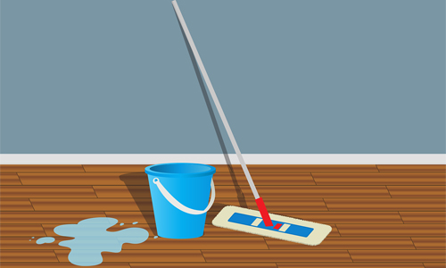 popular home cleaning services