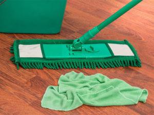 Mopping and Vacuuming