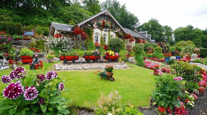 How to plan and create a perfect garden