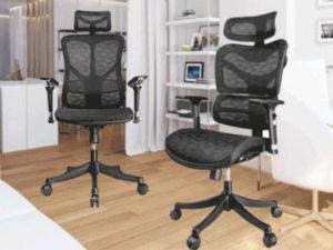 Argomax Mesh Ergonomic Office Chair