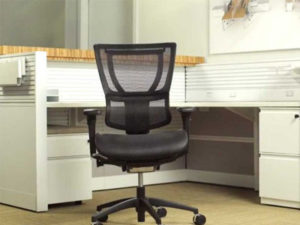 Eurotech Seating Ergohuman Mid Back Chair