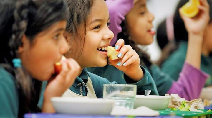 How Eating Right can Help Students – Homoq.com Guide