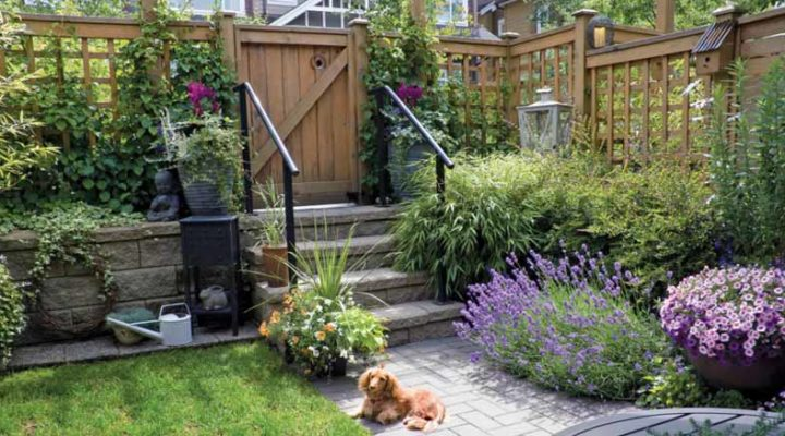 Did You Checked These Safe Garden Tips Before Allowing Your Kids To Play!