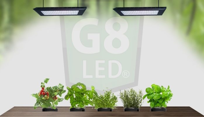 Mistakes Overlooked by LED Grow Light Users