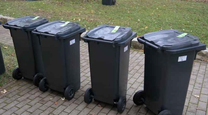 What You Should Know About the Best Skip Bin Service