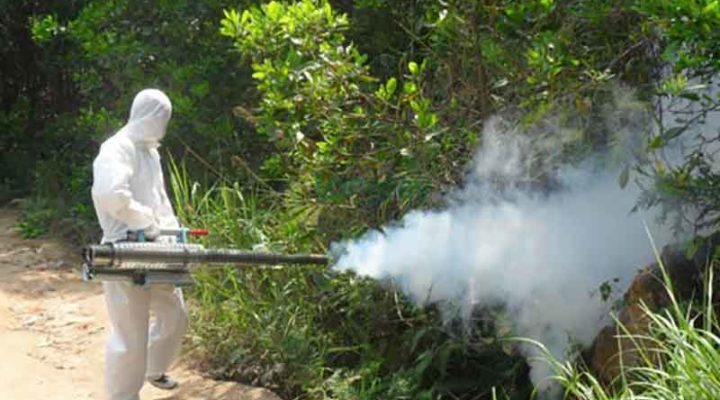 Low-Cost Home Mosquito Control