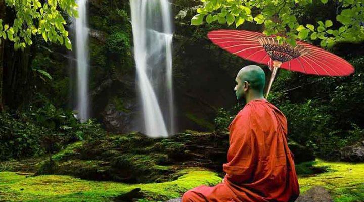 How Gardening can Help You Reach Your Inner Spiritual Awareness