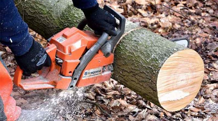 Important Things to Check Before You Buy a Chainsaw