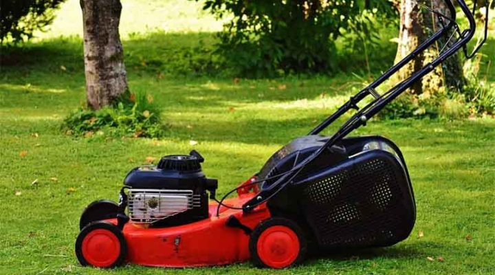 How to Choose the Best Grass Cutters for Your Garden