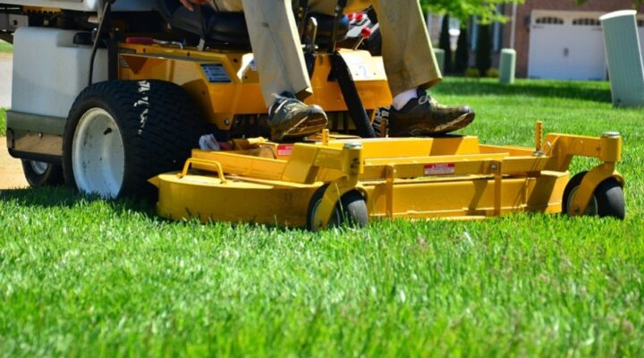Best Time to Mow Your Lawn – Grass Cutting 101