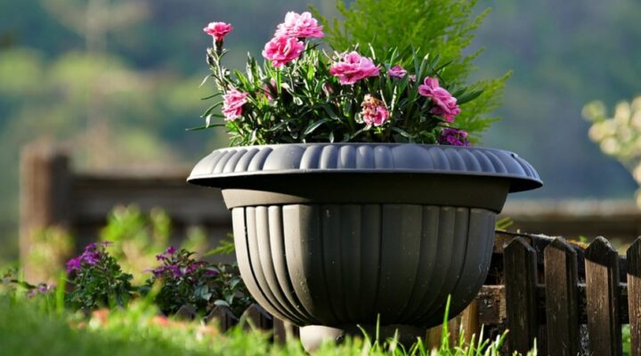 Eight Tips to Follow to Clean and Maintain Your Garden Planters