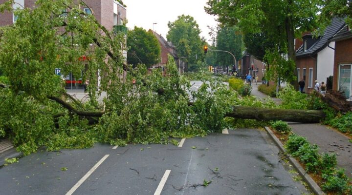 How To Protect Your House From Storm Damage