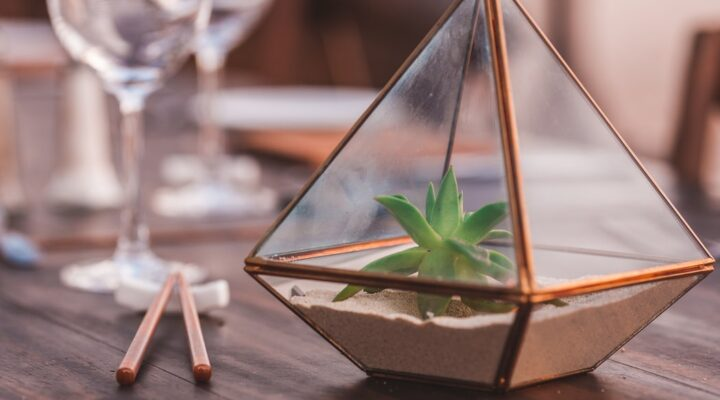 Centerpieces for Your Dining Room Table [6 Creative Ideas]