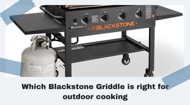 Which Blackstone Griddle is Right for Outdoor Cooking?