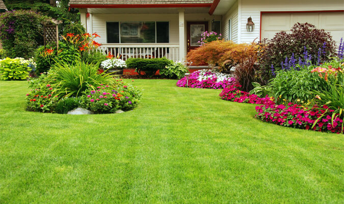 Growing the Best Lawn on the Block: 7 Secrets for Green Grass