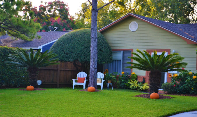 How to Get a Greener Lawn: The Basics Explained