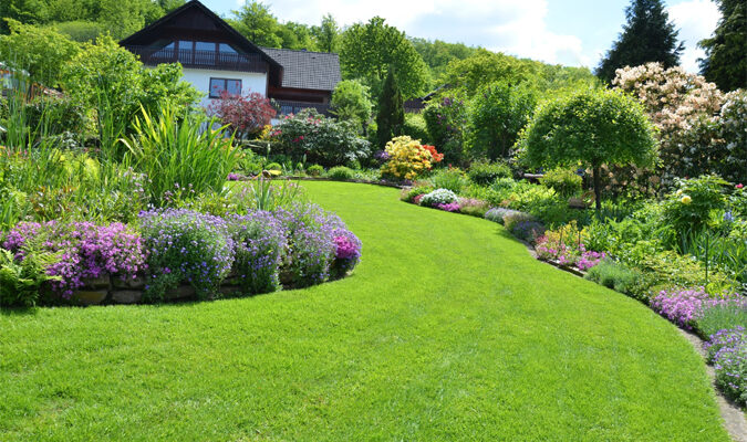 How to Find the Perfect Lawn Care Service