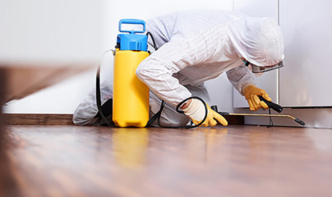Do I need Pest Control for my house?