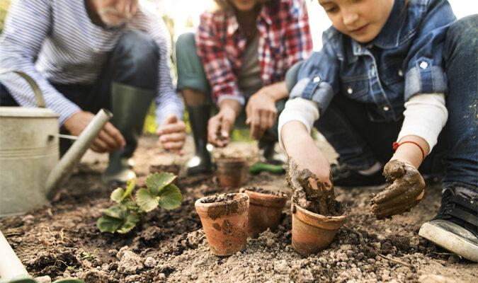 Revamp Your Home: 8 Easy DIY Backyard Ideas