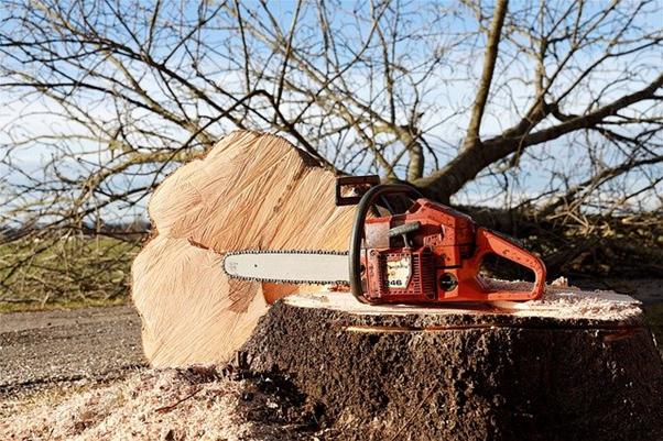How Often Should I Sharpen My STIHL Chainsaw?