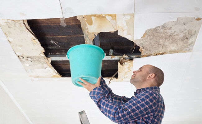 What Every Homeowner Should Do if Their Roof Is Leaking
