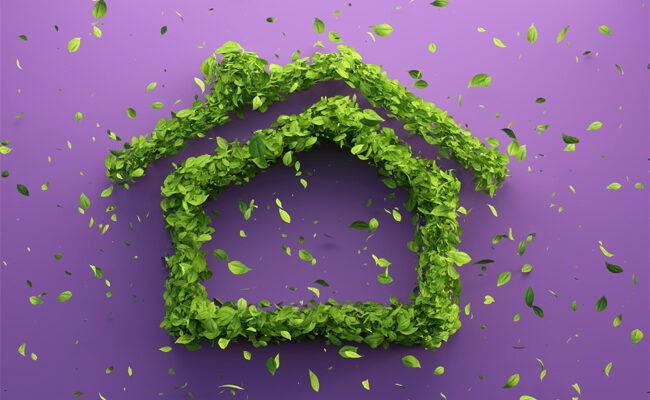 5 Changes You Can Make For a More Sustainable Home