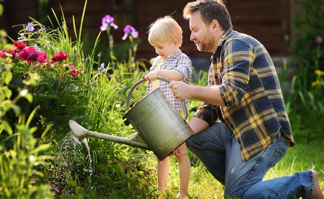 6 Ways To Conserve Water When Gardening