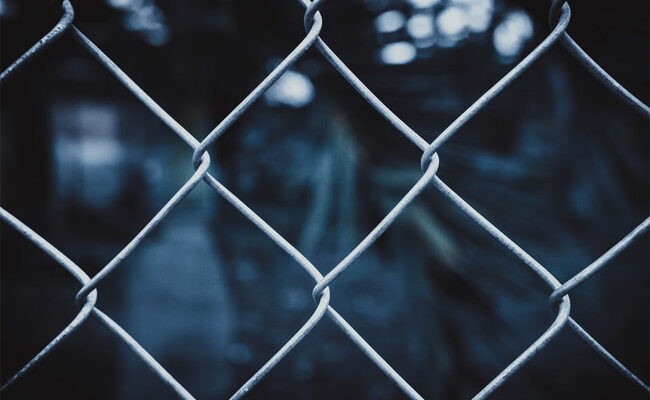 Are Chain Link Fences Best for a Dog?