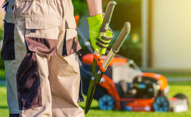 4 Ways Landscaping Services Can Elevate Your Property