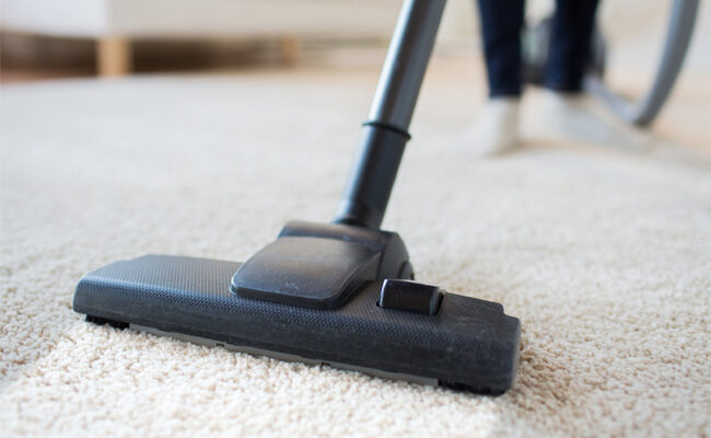Why You Should Hire Professional Carpet Cleaners
