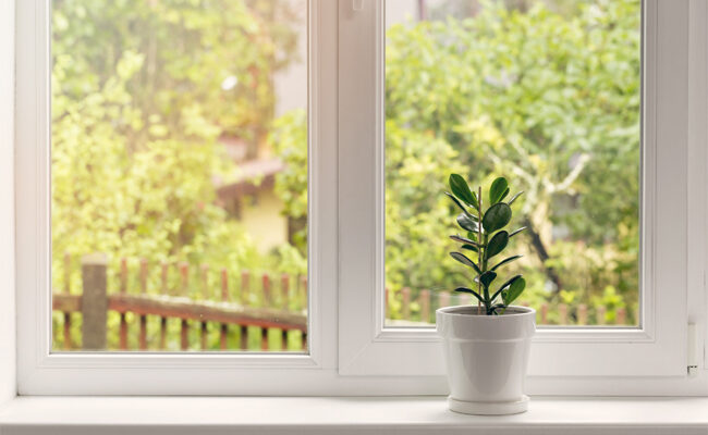 6 Signs That You Need a Window Replacement