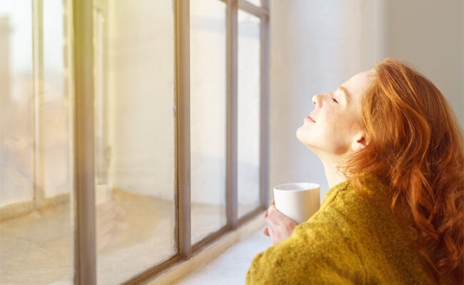How to Choose the Best Energy-Efficient Windows for Your Home