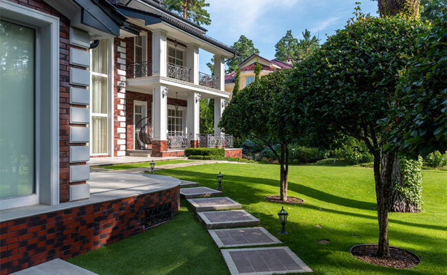 Spruce up Your Yard: 5 Lawn Renovation Ideas