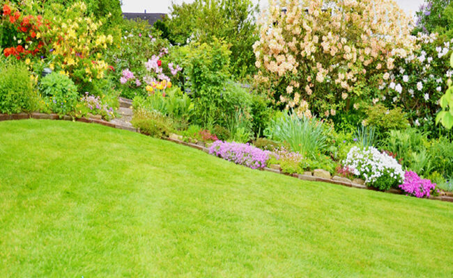 5 Pro Tips For Beautiful Landscaping Success